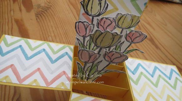 Tulip Explosion card1