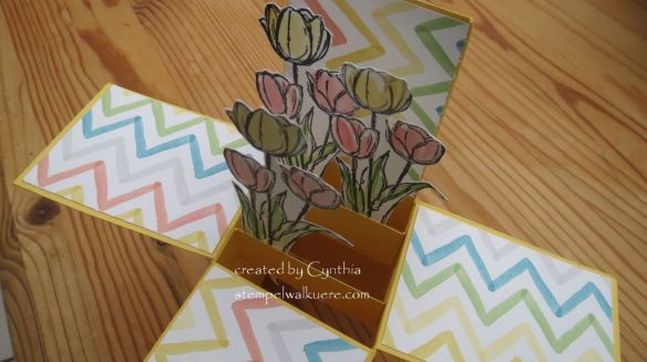 Tulip Explosion card3