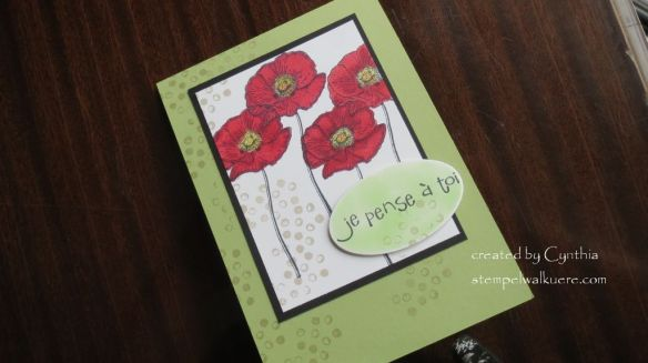 Poppies for Jo