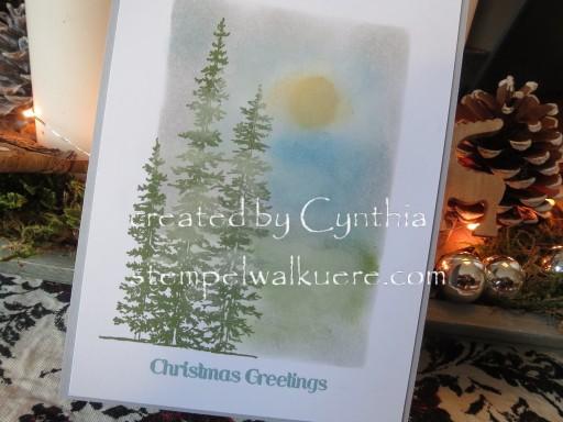 Framelit Card gewischt by Cynthia Stempelwalküre 3