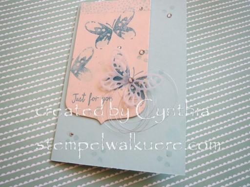 Aqua Card Stempelwalküre 3