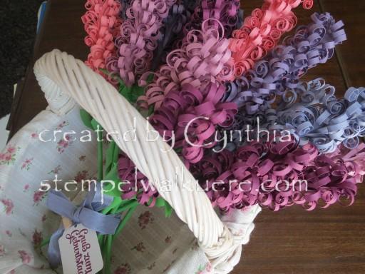 Hyacinth Stempelwalküre 1b