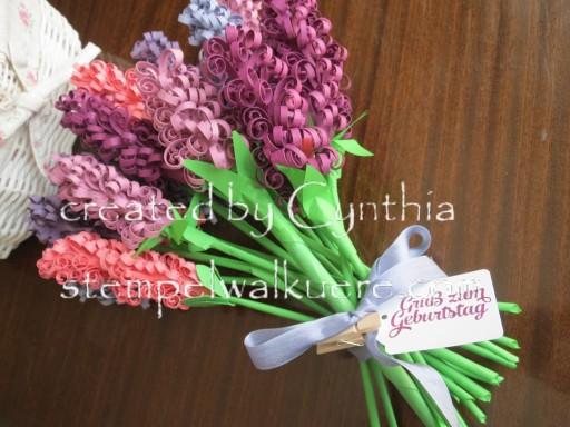 Hyacinth Stempelwalküre 1d
