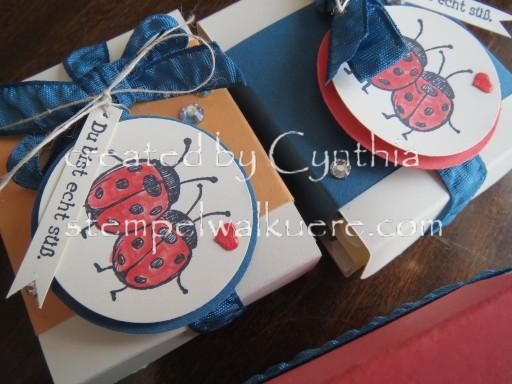 Ladybug Mini Ritter Sport Stempelwalküre 1c